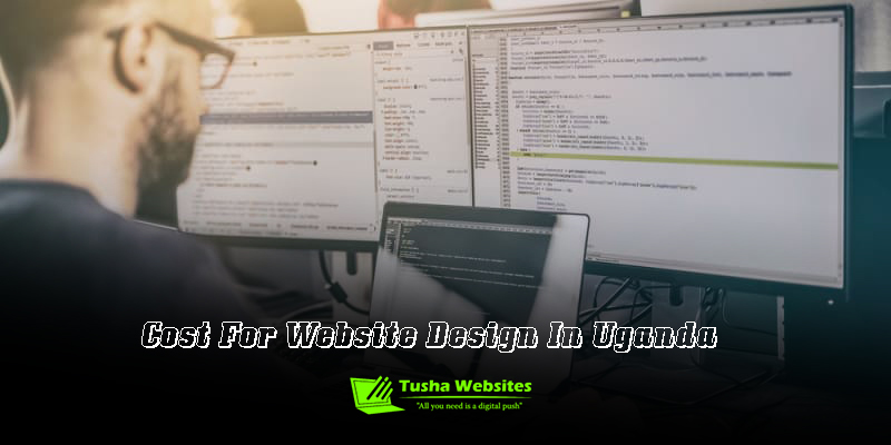 Cost For Website Design In Uganda
