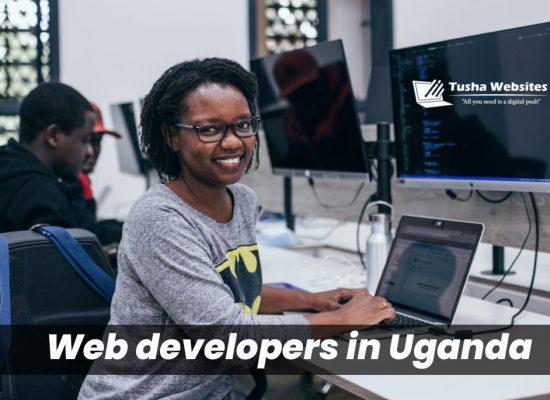 Full service Web developers in Uganda